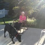 Photo for Companion Care Needed For My Mother In Plainfield