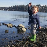 Photo for Nanny Needed For 1 Child In Mercer Island.