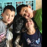 Photo for Babysitter Needed For 3 Children In Bonney Lake