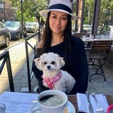 Photo for Looking For A Pet Sitter For 1 Dog In Hoboken