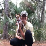 Photo for Dog Walker Needed For Fun And Friendly Chihuahua!