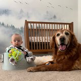 Photo for Energetic, Loving Nanny Needed For 1 Child In Washougal