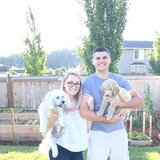 Photo for Looking For A Pet Sitter For 2 Dogs In Bonney Lake