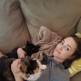 Photo for Sitter Needed For 3 Cats In Hollywood/West Hollywood Area