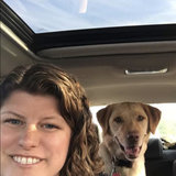 Photo for Looking For A Pet Sitter For 1 Dog In Framingham