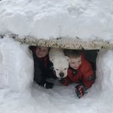 Photo for Babysitter Needed For 2 Children In Southwick.