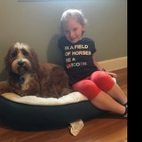 Photo for Occasional Weeknight Babysitter Needed For 1 Child In Providence