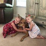 Photo for Babysitter Needed For 2 Children In Ashland