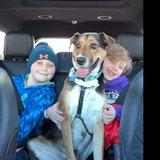 Photo for Babysitter Needed For 2 Children In Jamison
