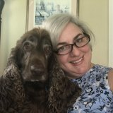 Photo for Live In Caregiver Needed In Tampa, FL.