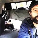 Photo for Dog Sitter/Walker