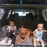Photo for Energetic, Caring Nanny Needed For 2 Children In Saint Francis