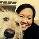 Photo for Dog/House Sitter