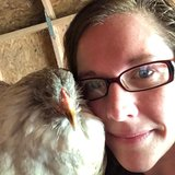 Photo for Pet Sitter For Flock Of Chickens