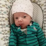 Photo for Mother's Helper Needed For 12wk Old In Bloomfield