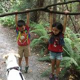 Photo for Babysitter Needed For 2 Children In Bonney Lake