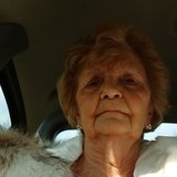 Evelyn P.'s Photo