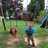 Photo for Babysitter Needed For My Children In Hatboro.
