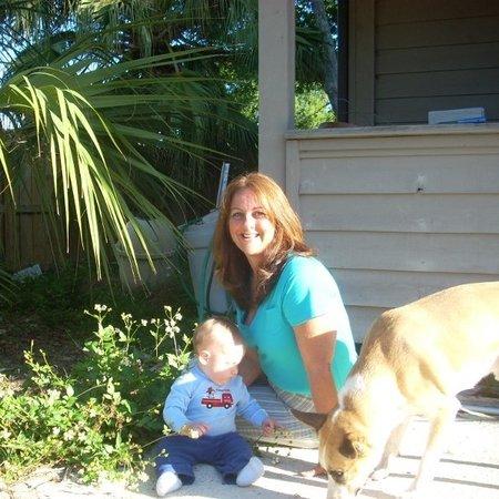 BABYSITTER - Christy B. from Vero Beach, FL 32968 - Care.com