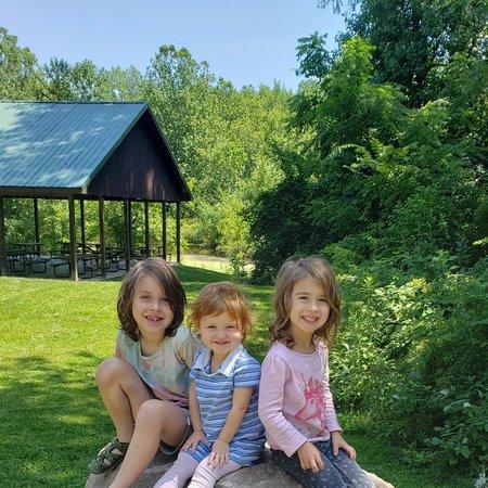 Child Care Job in Hickory Corners, MI 49060 - Nanny Needed For 3 Children In Hickory Corners - Care.com
