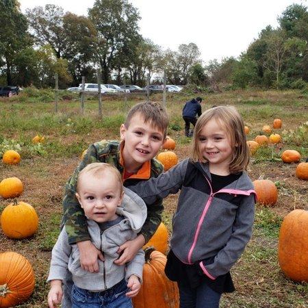 Child Care Job in Huntington Station, NY 11746 - Nanny Needed For 3 Children In Huntington Station - Care.com