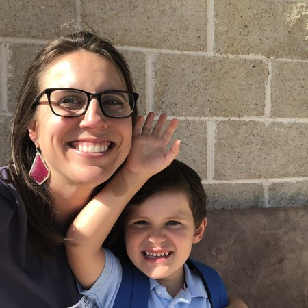 Child Care Job in Houston, TX 77096 - Looking For An Afternoon Nanny For Two Boys in Meyerland Area - Care.com