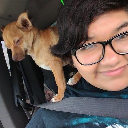 Pet Care Provider from Corpus Christi, TX 78418 - Care.com