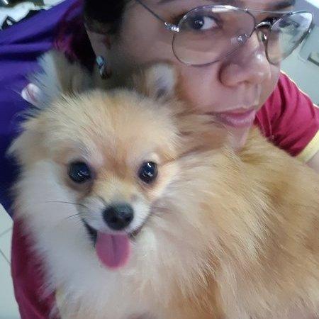 Pet Care Provider from Alexandria, VA 22315 - Care.com