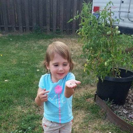 Child Care Job in Billings, MT 59105 - Nanny Needed For 2 Children In Billings. - Care.com