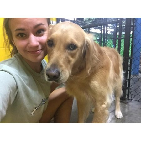 Pet Care Provider from Candler, NC 28715 - Care.com