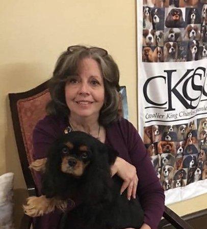Pet Care Job in Wichita, KS 67203 - Grooming Help - Care.com