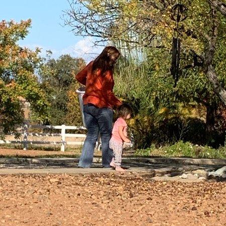 Child Care Job in Wilton, CA 95693 - Nanny - Care.com