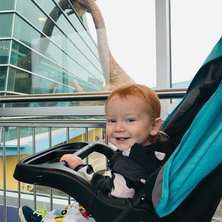 Child Care Job in Fort Wayne, IN 46819 - Starts In June - Care.com
