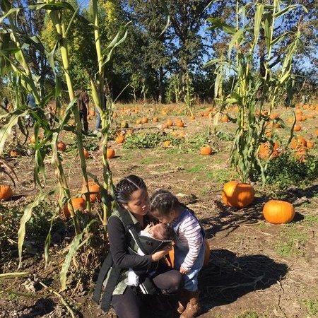 Child Care Job in Vancouver, WA 98685 - Nanny Needed For 2 Children In Vancouver. - Care.com
