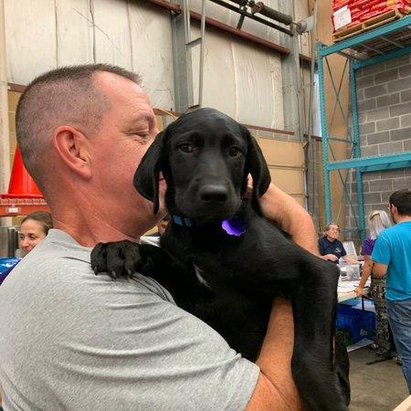 Pet Care Job in Ashburn, VA 20148 - Sitter Needed For 1 Dog In Ashburn - Care.com