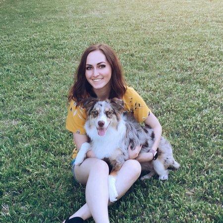 Pet Care Provider from Dallas, TX 75219 - Care.com