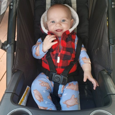 Child Care Job in Finksburg, MD 21048 - Nanny Needed For World's  Greatest 7 Month Old - Care.com