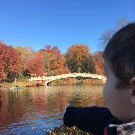 Child Care Job in Forest Hills, NY 11375 - Nanny Needed To Walk Child To School - Care.com