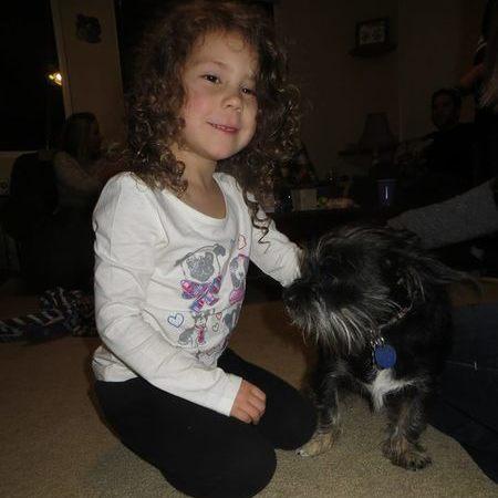 Child Care Job in Los Altos, CA 94022 - Afternoon Nanny Needed For 2 Children In Los Altos - Care.com
