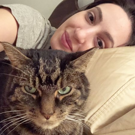 Pet Care Job in Brooklyn, NY 11201 - Sitter Needed For 1 Cat In Brooklyn (8/13 And 8/14) - Care.com