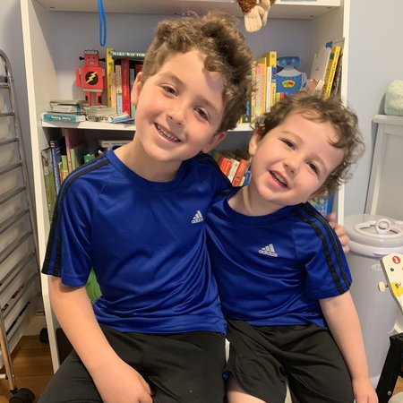 Child Care Job in Needham, MA 02492 - After School Care For 2 Fun Boys In Needham - Care.com
