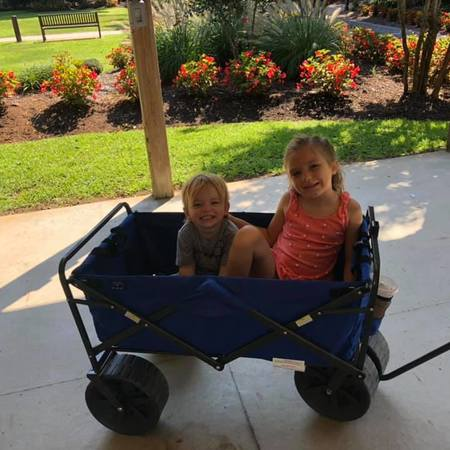 Child Care Job in Forest Hill, MD 21050 - Nanny Needed For 3 Children In Forest Hill - Care.com