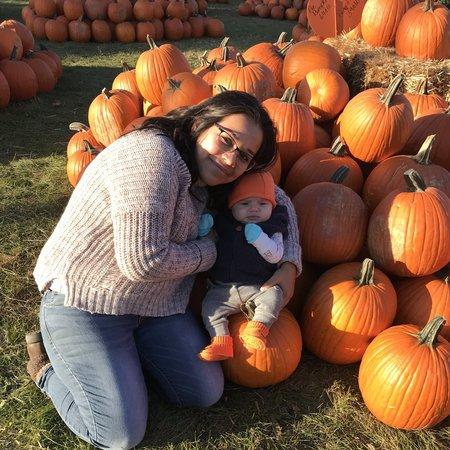 Child Care Job in Loves Park, IL 61111 - Nanny Needed For 1 Child In Loves Park. - Care.com