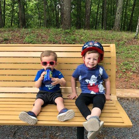 Child Care Job in Marietta, GA 30062 - Patient, Loving Nanny Needed For 2 Children In Marietta - Care.com