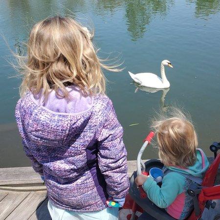 Child Care Job in Rockford, IL 61109 - Nanny Needed For 2 Children In Rockford. - Care.com