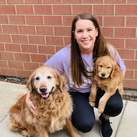 Pet Care Job in Chicago, IL 60654 - Looking For A Pet Sitter For 2 Dogs In Chicago - Care.com