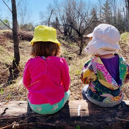 Child Care Job in Duluth, MN 55812 - Nanny Needed For 3 Children In Duluth - Care.com