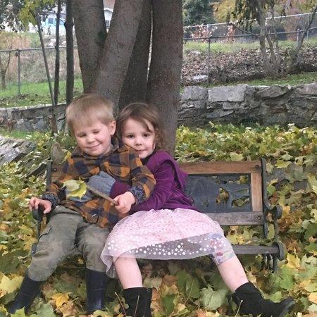 Child Care Job in Colville, WA 99114 - Reliable, Responsible Nanny Needed For 2 Children In Colville - Care.com