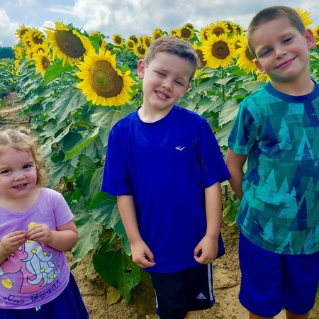 Child Care Job in Holmdel, NJ 07733 - Babysitter/Nanny Needed For 3 Children In Holmdel - Care.com