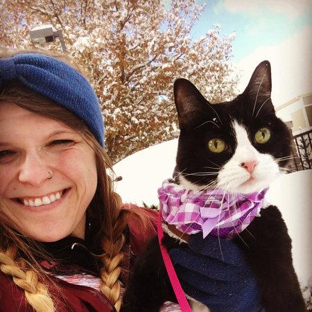 Pet Care Job in Denver, CO 80247 - Looking For A Pet Sitter For 1 Cat In Denver - Care.com
